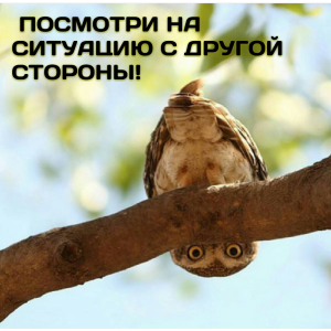 textgram_1441606678